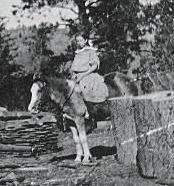 About 1907, Jennie, CM and Esther Smith on their homestead in the Blanco Basin - Colorado.  Grammy is riding Pet.  She had her 12th birthday here on March 13th.  She fell in-love with the Colorado Rockies in due time.