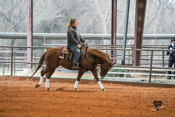 RPC1302021 SMUEQUESTRIAN WG0010-738