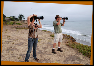 The next shot shows what they were aiming at!  Taken on the Spyglass Bluffs in Shell Beach, CA.