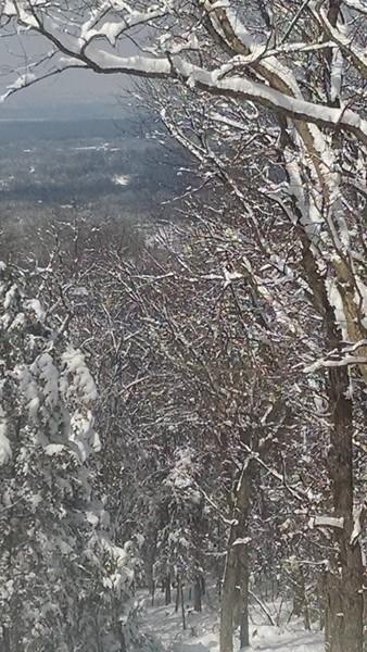 SNOW: Feb 15 -- GORGEOUS