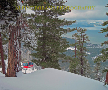 The famous tram at Heavenly from near the top of gunbarrel. Look at the snow covered trunk and the Lake in the background.