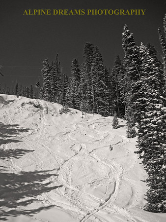 POWDER LINES SEPIA