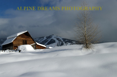 STEAMBOAT BARN LANDSCAPE 5