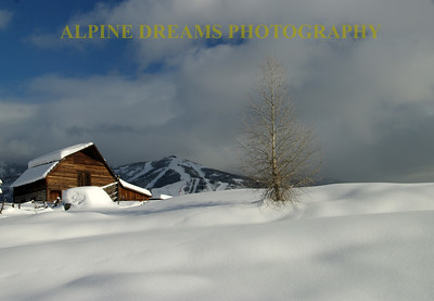 STEAMBOAT BARN LANDSCAPE 7