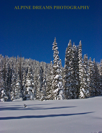 Yes this section was flat and that is why it was untouched all day. Two feet of fresh for cross country skiing.