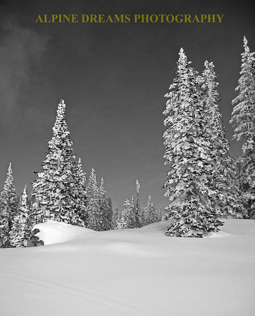 The sky was dark blue but I think that Black and white gave more clarity to this scene.  Thats 18 inches of fresh powder you see in front of you.