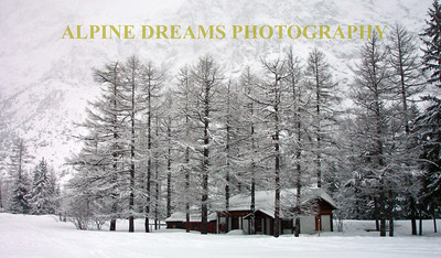 This cabin jumped out at me. Between the dark brown trunks of the evergreens and the walls of the cabin the stark contrast between the snow storm and the browns gave this a Norman Rockwell feeling.  Behind those trees is a 10,000 foot mountain hidden by the storm.