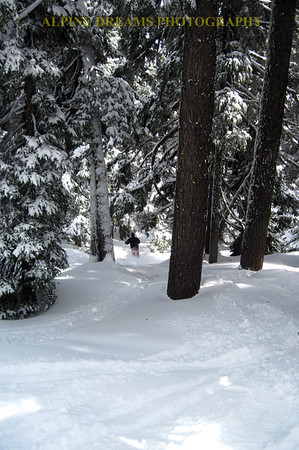 CALLED POWDER IN THE TREES           ---    UNBELIEVABLE comes to mind!  Some of the turns in the trees were very very memorable.   Many reasons to return here .
