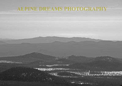Called TREES IN BLACK & WHITE    ---   This misty mountain range reminded me of skyline drive and the blue ridge mountains.   Take me Home Country road!