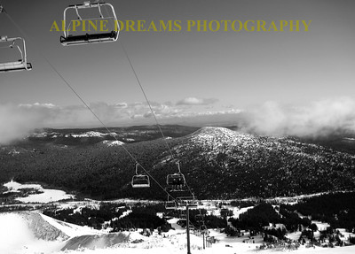SUMMIT CHAIR IN BLACK & WHITE