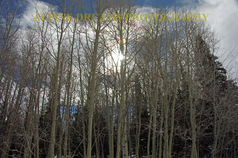 RAINBOW CLOUDS AND ASPENS