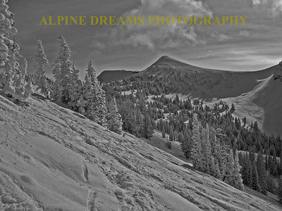 TARGHEE-RIGHT-SIDE-BW