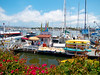 7/17/12  Welcome to Ventura Harbor.  Hop on a water taxi or rent a boat....