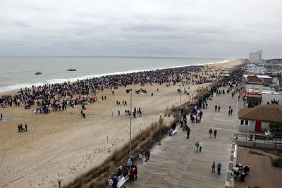 Free Download - Feb. 5, 2012 Polar Bear Plunge