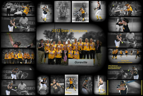 2012 Goreville Lady Blackcats 2012