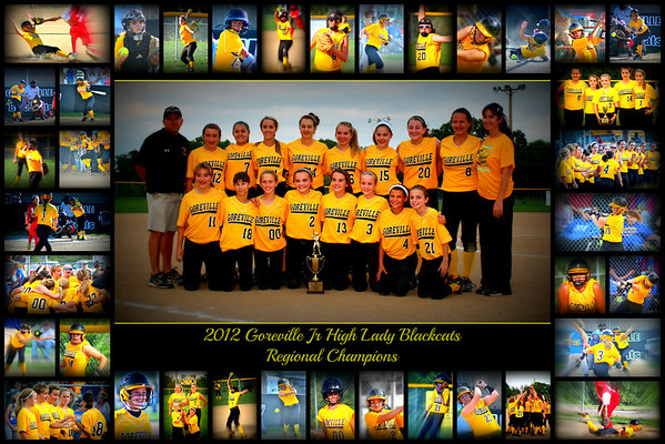 SOFTBALL STATE RUNNER'S UP GOREVILLE LADY JR BLACKCATS 2012-2013
