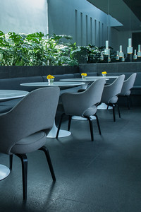 Distrito Capital hotel restaurant, commissioned by interior design magazine. Mexico city