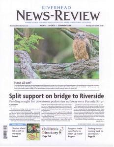 Great horned Owl - North Fork Preserve