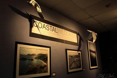 Coastal Wildlands show @ Viento y Agua 2011. Long Beach, California