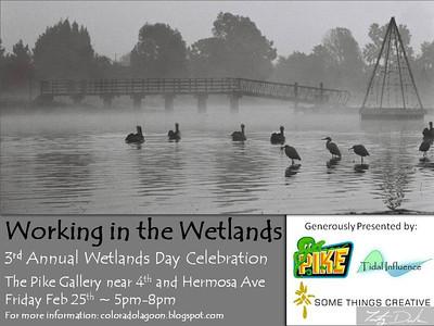 wetlands_2011_flier