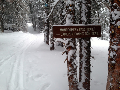 We took the Montgomery Pass Trail