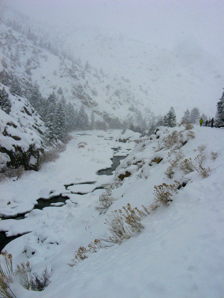 Poudre River with snow