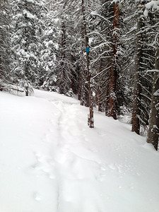 "We were the first ones up this morning.  There was 4-6"" of fresh snow on the trail"