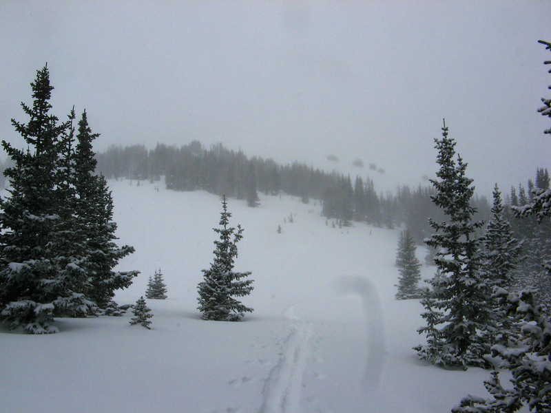 Looking up towards the bowls at Montgomery Pass