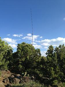 20 meter Buddistick Vertical