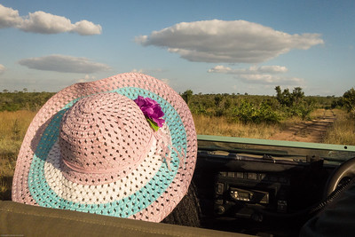 Ranger Rob's wife's pink hat!