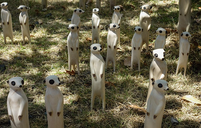 Meercats wood carvings