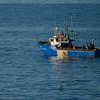 Fishermen off Cape Point.