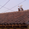 peru060066.jpg