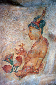 PAINTED LADY - SIGIRIYA