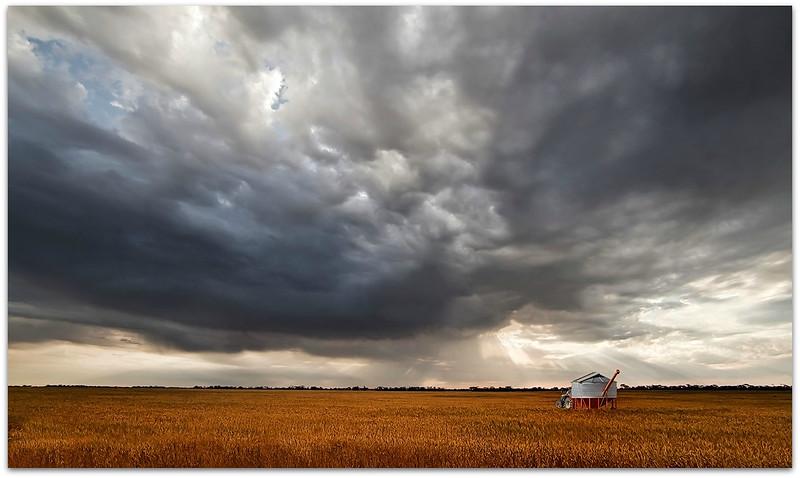 Storms Across Wheat Fields