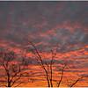 Sunrise Coober Pedy