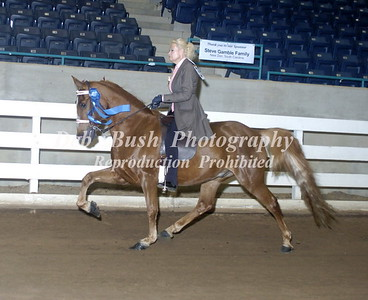 CLASS 6  LITE SHOD AMATEUR OWNED & TRAINED