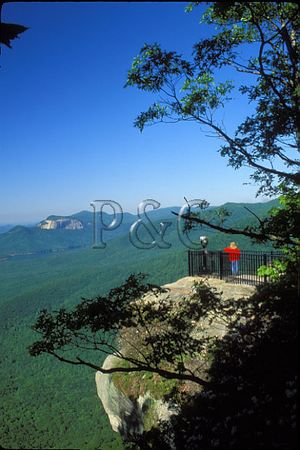 SC CAESARS HEAD SP FLAT TOP IN DIST 1g