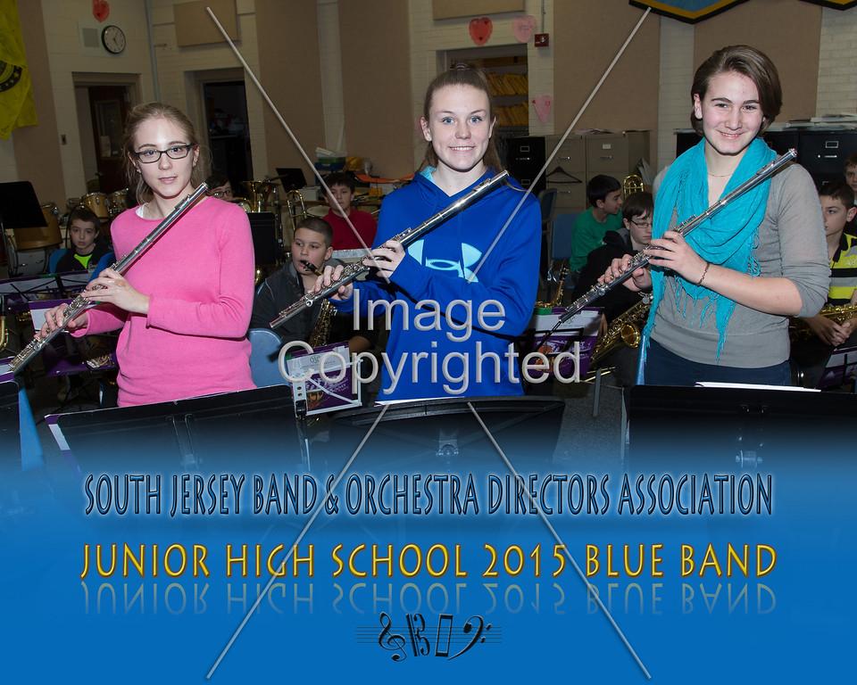 #314 -BLUE BAND-JR HS-GDVH5564