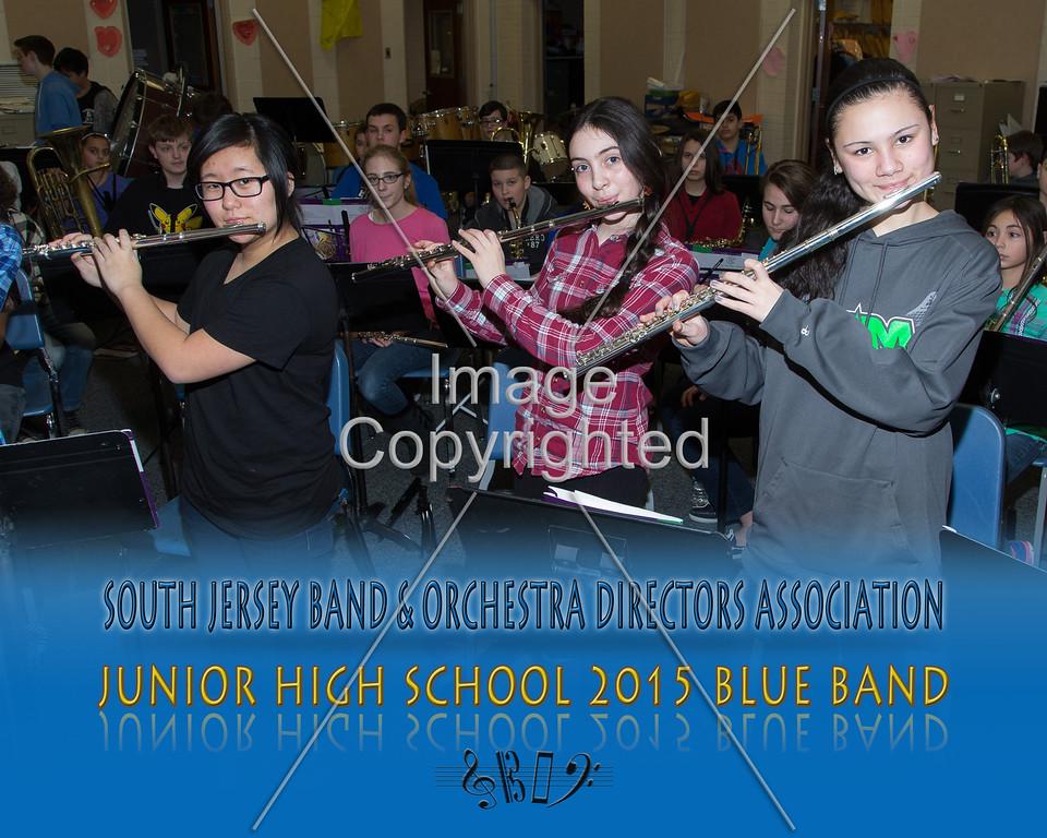 #305 -BLUE BAND-JR HS-GDVH5555