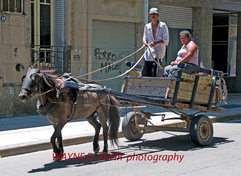 BuenosAires2010-1222A-73A.jpg
