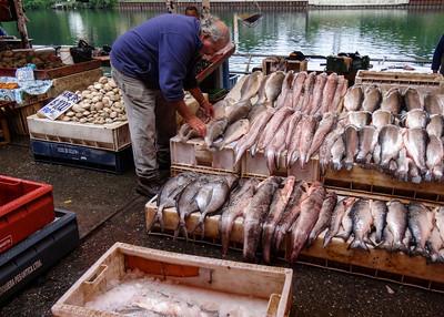 VALDIVIA FISH MARKET