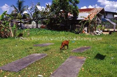 SURINAME, Paramaribo. Old Ashkenazi Cemetery. (2007)