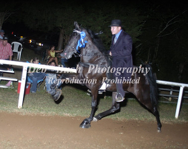 CLASS 33  TWO YR OLD OPEN MARES & GELDINGS