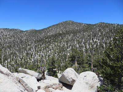 View of San Jacinto from Drury Peak