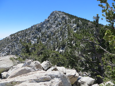 Viewof Mt. San Jacinto from Folly