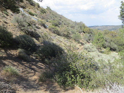 Trail on HPS map, which ends a couple of 100 feet downward