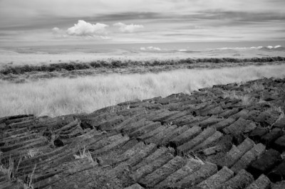 Drying Peat, Isle of Islay, Scotland. 2011