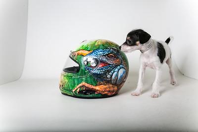 Helmets-019