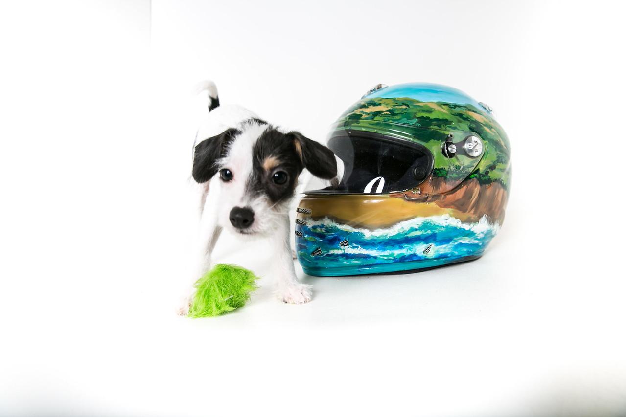 Helmets-033
